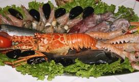 Fish plate »sv. Duje«